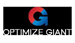Optimize Giant Glen Ellyn Web Design